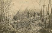 Bois d'Ailly